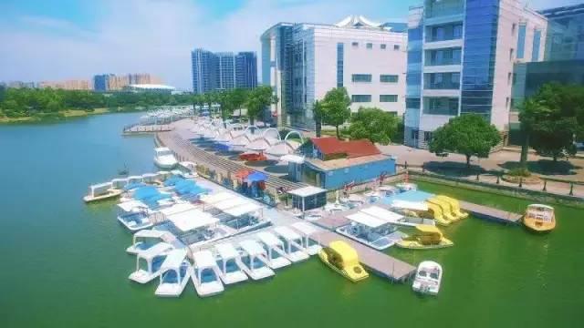 上海宝山郊区高绿化率地区航拍
