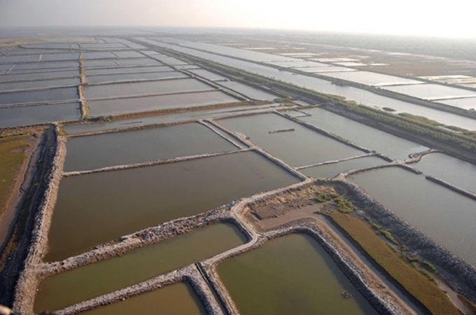 江天生态园平面图